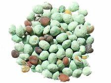 Micro-Trèfle Pipolina Enrobé - Trifolium Repens - Micro-Clover - ( Engra - SEM05