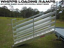 Sheep Loading Ramp 2.5 metres long x 450mm wide-extra height sides