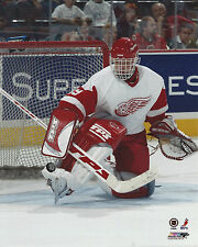 DOMINIK HASEK DETROIT RED WINGS 8 X 10 PHOTO WITH ULTRA PRO TOPLOADER