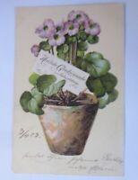 Geburtstag, Blumen, Blumentopf,  1903  ♥