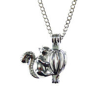 1 pc Silver Plated Squirrel Locket Charm Pendant Necklace Lobster Clasps Chain