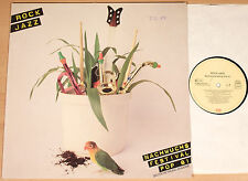 NACHWUCHS-FESTIVAL POP '81 - Rock / Jazz  (mit Brainstorm, Arpad Huba / LP m-)