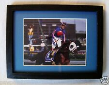 1995 KENTUCKY DERBY WINNER THUNDER GULCH PHOTO PICTURE WOOD FRAME SMALL KY
