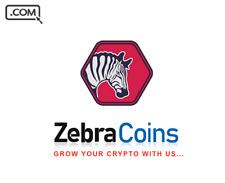 ZebraCoins.com - Premium Domain Name for sale - COINS CRYPTO BRAND Name