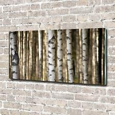 Glas-Bild Wandbilder Druck auf Glas 140x70 Deko Blumen & Pflanzen Birken