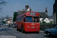 London Transport RF392 Downe 23rd April 1978 Bus Photo