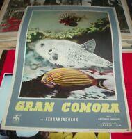 Gran Comoros, Francs Fotobusta Small Original 1953 a.Nediani Documentary Type B