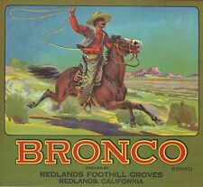 "RARE OLD ORIGINAL 1920 RANGE RIDER ""BRONCO BRAND"" BOX LABEL REDLANDS CALIFORNIA"
