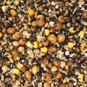 1.9kg or 1.5kg SPOD MIX,FULLY PREPARED,PARTICLES,NUTS,SEED,SALTS,FREE POSTAGE