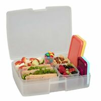 Leak-proof Bento Lunch Box with 5 Removable Containers (Fruit/Multicolor)