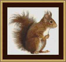Squirrel Cross Stitch Kit