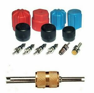 A/C System Valve Core and Cap Kit + Schrader Remover MT2903