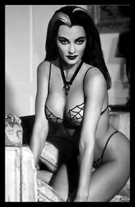 Lily Munster Sexy Vamp Magnetic Poster Canvas Print FRIDGE MAGNET 6x8 Large