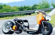XL Radiator Cover  Honda Zoomer,  Ruckus, Metropolitan