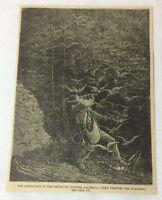 1882 magazine engraving ~ BRIDGE OF ICONONZO, COLUMBIA