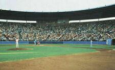 """Play Ball"" Baseball Mural - Wallpaper - 8' x 13' - Environmental Graphics - NIB"