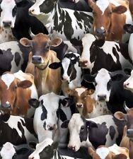 Farm Animals Cows Stoffe Kühe Patchworkstoff Tiermotive Bauernhoftiere Tiere Kuh
