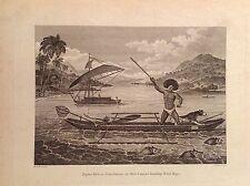 HOMME DE PAPOUASIE LA GUINÉE pêcheur chasse canoë-kayak acquaforte 1817 Cooke