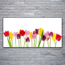 Tulup Canvas print Wall art on 120x60 Image Picture Tulips Floral