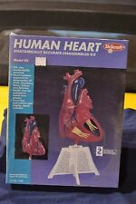 Skilcraft 71338 Human Heart Anatomically Accurate Model Kit - NEW