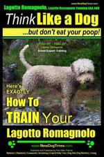Lagotto Romagnolo, Lagotto Romagnolo Training Aaa Akc: Here's Exactly How to.
