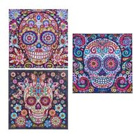 Skull Special Shaped Diamond Painting By Numbers for Adults Mosaic Supplies