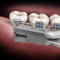 1 x Dental Orthodontic Distal End Cutter Flush  Orthodontic Instruments Plier