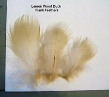 12 Lemon Wood Duck Flank feathers.Combine Shipping