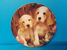 Double Trouble Puppy Love Plate Crestley Collection