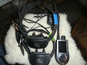 Sport Dog tek 1.0 e-collar and GPS
