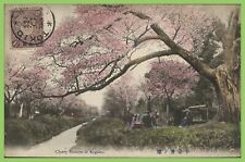 Japan - Cherry Blossom at Kogenai postcard used with 1½s on front