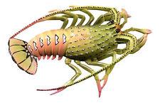 10 Inch Tropical Florida Lobster Nursery Bath Tiki Deck Wall Plaque Decor Lime