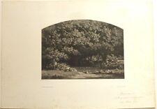 """Lithographie, François-Louis FRANCAIS, """"Une mare au parc de Chenonceaux"""""""""""