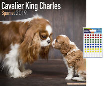 Cavalier King Charles Spaniel 2019 Wall Calendar - 70 Coloured Dot Stickers