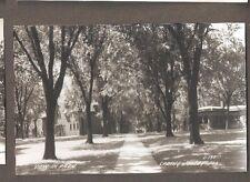 Vtg Postcard View in Park Spring Valley ILL IL RPPC Illinois