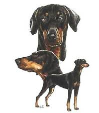 DOBERMAN DOG UNCROPPED MultiDogs.Twelve Identical 6 inch fabricSquare - -Quilt