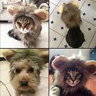 New 1Pc Pet Costume Lovely Lion Mane Cat Dog Hat Wig Cosplay Lion Stuffed Plush