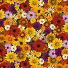 Elizabeth's Studio Multi Fall Flowers 100% cotton fabric by the yard