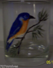 "Pair of Hand Painted Old Fashion Glasses "" Blue Birds"""