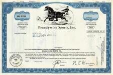 Brandywine Sports Stock Certificate - Outstanding Collector's Item!