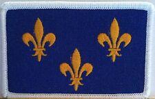 Île-de-France PARIS Flag  Iron-On Patch  Isle of France Emblem White Border