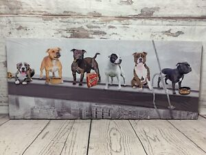 Staffordshire Bull Terrier Dogs New York Skyline Lunch Break Canvas Picture Dog