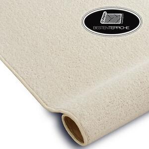 Long Life Modern Carpet Floor Trendy White Large Sizes! Rugs On Dimensions