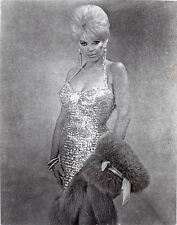 Orig. PHOTO-BARBARA NICHOLS -1950's BOMBSHELL ACTRESS