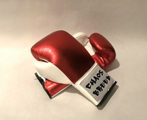 Choas Breed Boxing Gloves