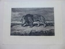 ANTOINE LOUIS BARYE ETCHING FIRST STATE  STRIDING LION