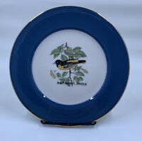 Baltimore Oriole Fine China Collector Plate by Walter Seibold Willow Grove, PA
