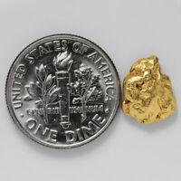 1.1526 Gram Alaska Natural Gold Nugget - (#41351) - FREE SHIPPING - Alaskan Gold