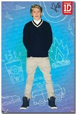 POSTER 6044 14 RE 22 X 34 1D ONE DIRECTION NIALL - POP