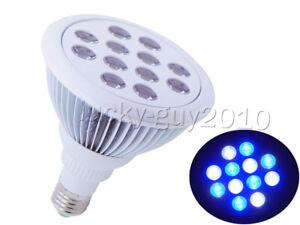 PAR38 12W 6pcs Cool White 6pcs Royal Blue 12X1W LED Light Lamp Bulb for Aquarium